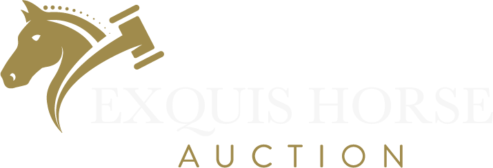 EXQUIS HORSE AUCTION